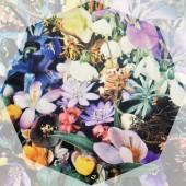edenworksによるワークショップ「Flower Picking!」開催!の写真