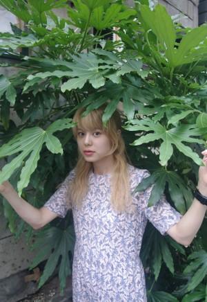 ナガタニサキの写真