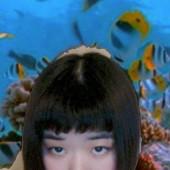 hibikinakamuraの写真
